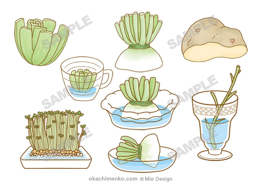 自由研究大じてん 植物野菜イラスト